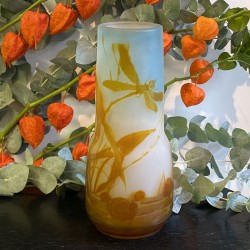 Emile Galle Cameo Glass Vase Dragonfly and pond...