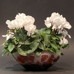 Emile Galle Cameo Glass Cyclamen Coupe