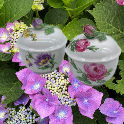 A Pair  Meissen Porcelain Bowls and Covers...